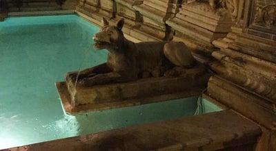Photo of Historic Site Fonte Gaia at Piazza Il Campo, 23, Siena, Italy
