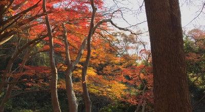 Photo of Trail 獅子舞 紅葉の名所 at 二階堂, 鎌倉市 248-0002, Japan