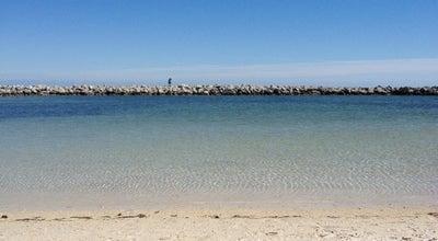 Photo of Beach Harry Harris Beach at 39 E Beach Rd, Tavernier, FL 33070, United States