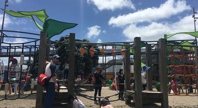 Photo of Playground Wynyard Quarter Playground at New Zealand