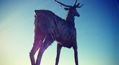 Photo of Outdoor Sculpture Олень at Нижневолжская Набережная, Нижний Новгород, Russia