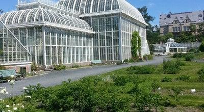 Photo of Botanical Garden Kasvitieteellinen puutarha at Unioninkatu 44, Helsinki 00170, Finland