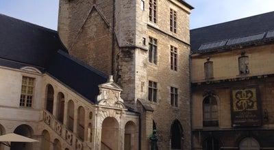 Photo of Art Museum Musée des Beaux-Arts at Palais Des États De Bourgogne, Dijon 21000, France
