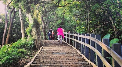 Photo of Trail 象山登山步道 Xiangshan Hiking Trail at 信義路五段150巷, 台北市 110, Taiwan