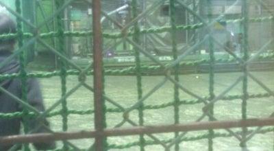 Photo of Baseball Field 田原本バッティングセンター at 磯城郡田原本町, Japan