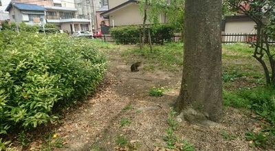 Photo of Playground 主税町公園 at 東区主税町2, 名古屋市, Japan