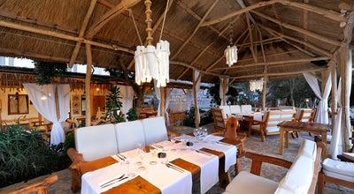Photo of Mediterranean Restaurant Laganini Lounge bar & Fish house at Palmizana, Hvar 21450, Croatia