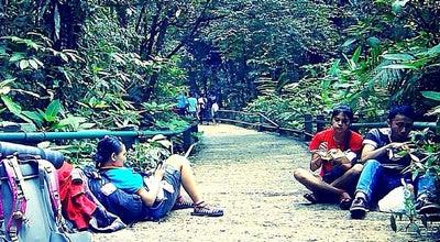 Photo of National Park Taman Nasional Gunung Gede Pangrango at Jl Raya Cibodas, Cianjur, Jawa Barat, Indonesia
