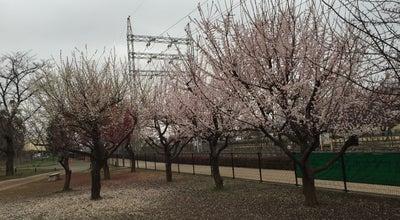 Photo of Park 昭島市 エコ・パーク at 美堀町3-16, 昭島市 196-0001, Japan