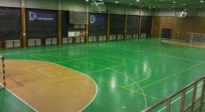 Photo of Basketball Court Veľká telocvičňa Domu Športu at Junácka 6, Bratislava 831 04, Slovakia