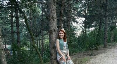 Photo of Park Yumru Kaya Piknik Alanı at Gaziler Dağı Mesire Alanı, Gebze, Turkey