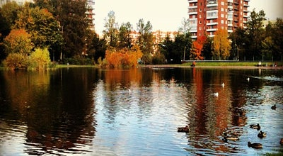 Photo of Lake Родниковое озеро at Просп. Луначарского, 92, Санкт-Петербург, Russia