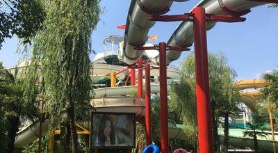 Photo of Pool 热带风暴 | Dino Beach at 闵行区新镇路78号, 上海, China