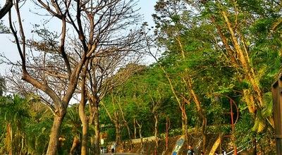 Photo of Zoo 壽山動物園 Shoushan Zoo at 鼓山區萬壽路350號, 高雄市 80444, Taiwan