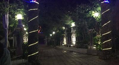 Photo of Music Venue Tolga ocak başı at Turkey