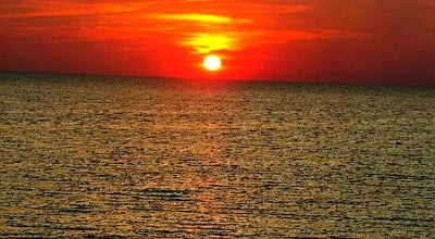 Photo of Beach Dunes of Panama at 7205 Thomas Dr, Panama City, FL 32408, United States