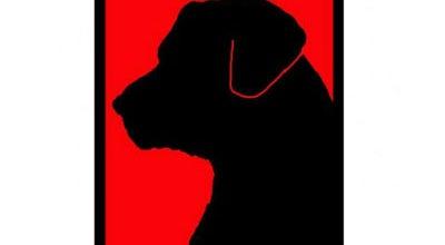 Photo of Bar Black Dog Pub at 6230 Covington Rd, Fort Wayne, IN 46804, United States