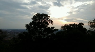 Photo of Trail Hutan Lipur Soga Perdana Viewpoint at Wooden Viewpoint Deck, Batu Pahat 83000, Malaysia