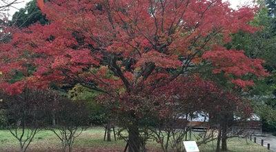 Photo of Historic Site 平尾山荘 (野村望東尼山荘跡) at Japan