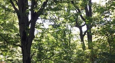 Photo of Trail Prospect Park Ravine at Prospect Park, Brooklyn, NY, United States