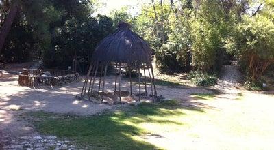 Photo of Playground Παιδικό πάρκο Πικιώνη at Ελευθερίου Βενιζέλου, Φιλοθέη, Greece