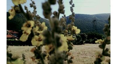 Photo of National Park Akşehir Yeşil Vadi at Turkey