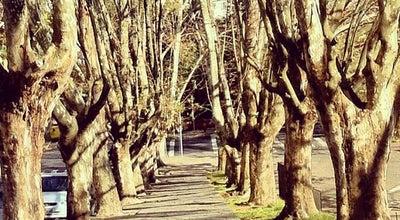Photo of Park Parque dos Macaquinhos at Av. Da Vindima, Caxias do Sul 95084-470, Brazil