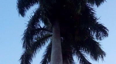 Photo of Park Hollows at Queens Park Savannah West, Port Of Spain, Trinidad and Tobago
