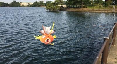 Photo of Lake ときわ湖 at Japan