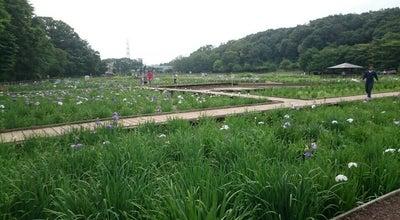 Photo of Park 北山公園 at 野口町4-50, 東村山市 189-0022, Japan