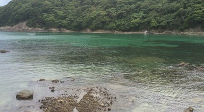 Photo of Beach 鍋田浜海岸 at 下田市 415-0025, Japan