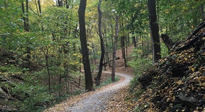 Photo of Trail Falls Ravine Trail at Pittsburgh, PA, United States