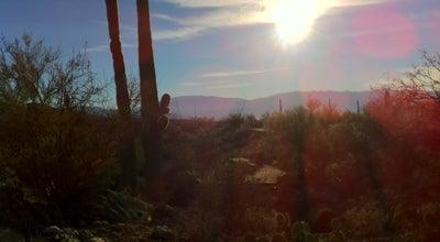 Photo of Trail Sabino Canyon Trail at Sabino Canyon, Tucson, AZ 85750, United States