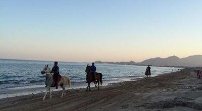 Photo of Beach شاطئ صمبريد Sambraid Beach at United Arab Emirates