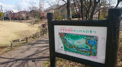 Photo of Park 下宅部遺跡はっけんのもり at 多摩湖町4-3, 東村山市, Japan