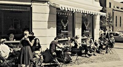 Photo of Cafe Cafe Dyrehaven at Soender Boulevard 72, Copenhagen 1720, Denmark