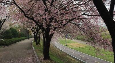 Photo of Park 분당 구미공원 at 구미동, 성남시, South Korea