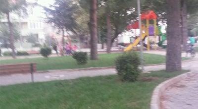 Photo of Botanical Garden Bahceli Evler Mahallesi Camili Park at Bahceli Evler Mahallesi, Burhaniye, Turkey