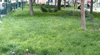 Photo of Park Selçuk Parkı at Selçuk Mahallesi, Niğde, Turkey