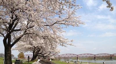 Photo of Park 笠松みなと公園 at 港町64, 羽島郡笠松町, Japan