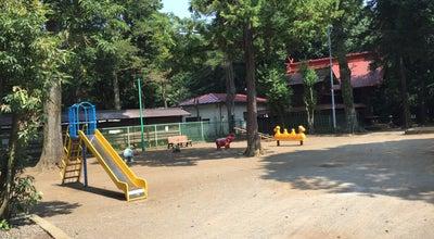 Photo of Park 国分寺市立 国分寺公園 at 西元町1-13-20, 国分寺市 185-0023, Japan