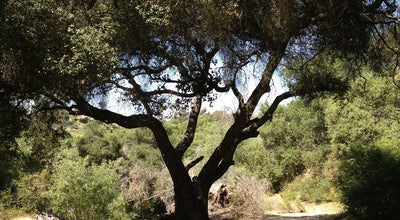 Photo of Trail Tecolote Canyon Natural Park at 5180 Tecolote Rd, San Diego, CA 92110, United States