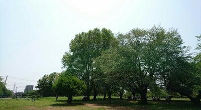Photo of Historic Site 史跡 武蔵国分寺跡 at 西元町1丁目, 国分寺市 185-0023, Japan