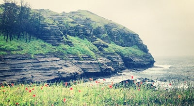 Photo of Beach 용머리해안 (Yongmeori Coast) at 안덕면 사계리, 서귀포시, South Korea