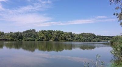 Photo of Lake Marcal-tó at Pápai Út, Győr, Hungary