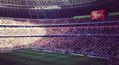 Photo of Soccer Field VIPложа Donbass arena at Donetsk, Ukraine