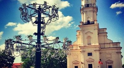 Photo of City Hall Rotušės aikštė at Rotušės Aikštė | Town Hall Square, Kaunas, Lithuania
