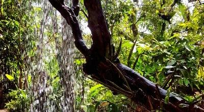 Photo of Botanical Garden สวนพฤกษชาติภูเก็ต (Phuket Botanic Garden) at Mueang Phuket, Thailand