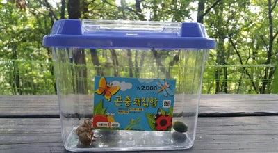 Photo of Park 희망대공원 at 수정구 공원로370번길 30, 성남시, South Korea