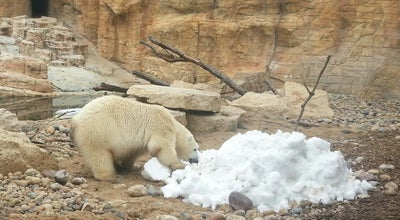 Photo of Arts and Entertainment International Polar Bear Conservation Centre at Assiniboine Park Zoo at Canada
